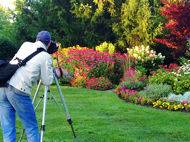 3 Perfect Places to Plant a Perennial Garden - Plaids and